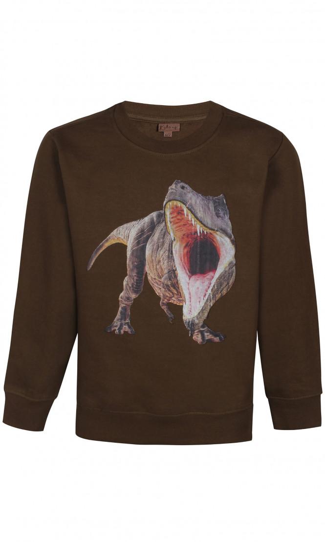 Sweatshirt Dinosaur Green